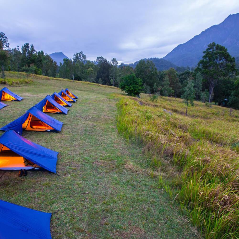 Mt Barney Lodge Camps