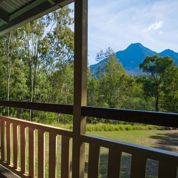 forestry-hut-view
