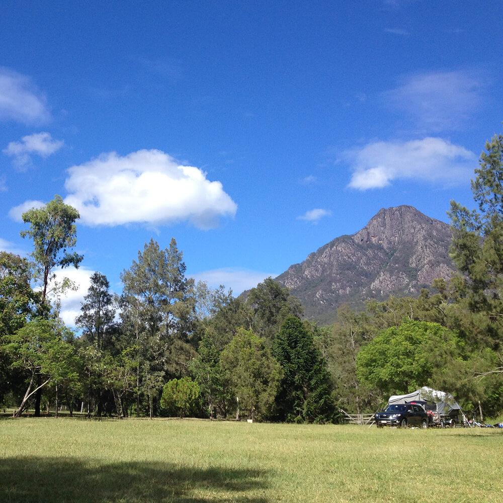grassy-campsite