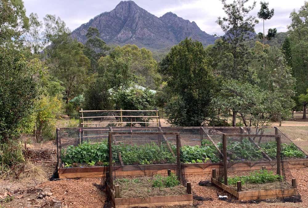 mt-barney-permaculture-garden